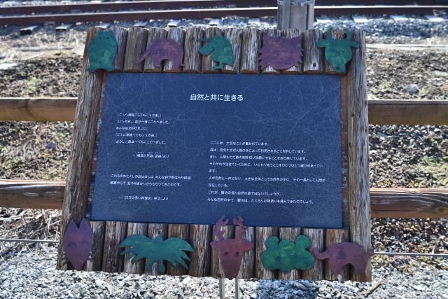 Dsc_5451